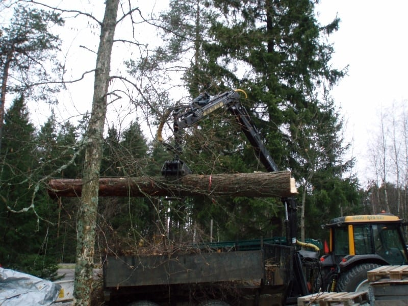 Metsavaunu 2009